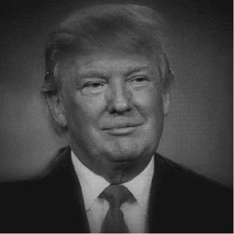 Watch GIF      Your browser does not support the video tag.      Eat your heart out lotengo ! GIF on Gfycat. Discover more donald trump GIFs on Gfycat