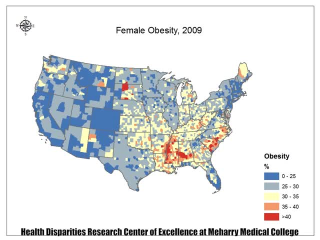 Watch and share Female Obesity 2009-2013 With Logo GIFs on Gfycat