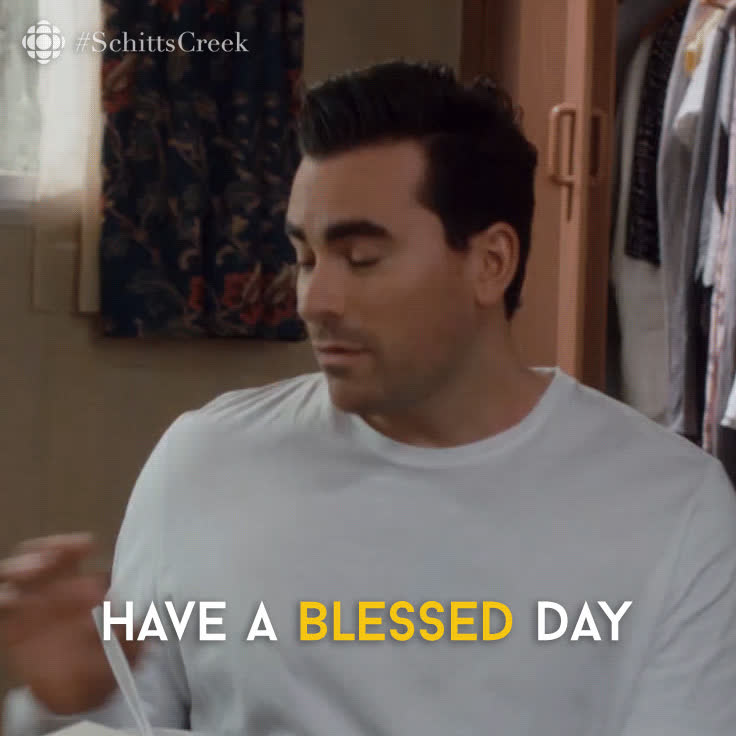 bless, blessed, dan levy, blessed GIFs