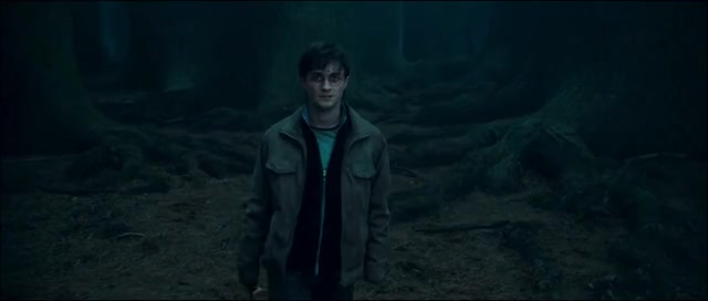 Watch this harry potter GIF on Gfycat. Discover more Harry, Potter, harry, harry potter, potter, wizard GIFs on Gfycat