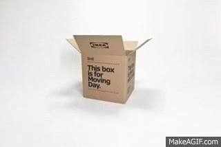 Watch and share Animated Moving Day Box GIFs on Gfycat