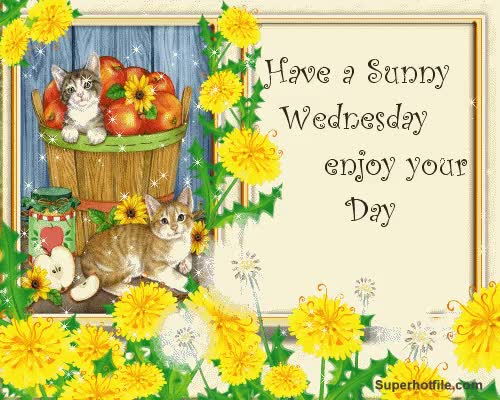 Watch and share Have Sunny Wednesday Enjoy Your Day GIFs on Gfycat