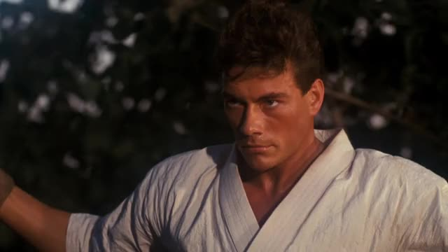 Watch and share Bloodsport GIFs on Gfycat