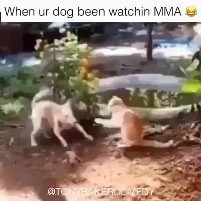 Super Funny flying Kick