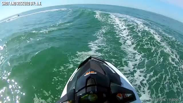 Watch and share Jet Ski Accident GIFs and Jet Skiing Crash GIFs by riverrebel on Gfycat
