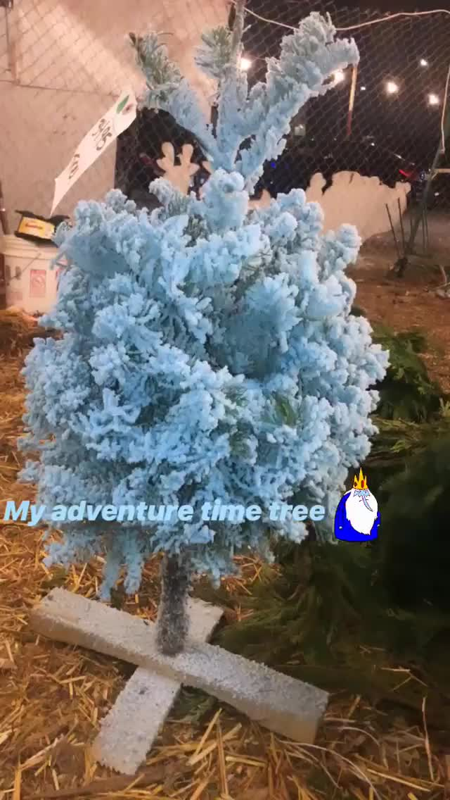 Watch and share Sophiemudd 2018-12-24 12:55:15.179 GIFs by Pams Fruit Jam on Gfycat