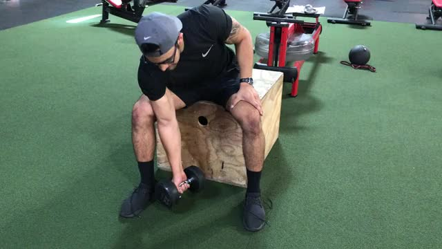 Watch Seated db concentration curls GIF by Gymapp (@hardcoregym) on Gfycat. Discover more related GIFs on Gfycat