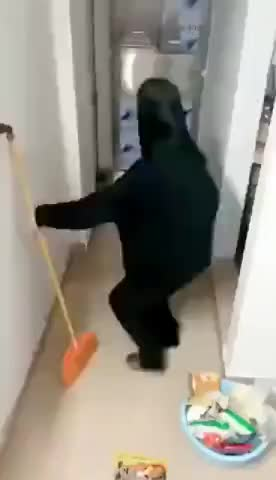 Watch and share Dafaq Mouse GIFs by Gif-vif.com on Gfycat