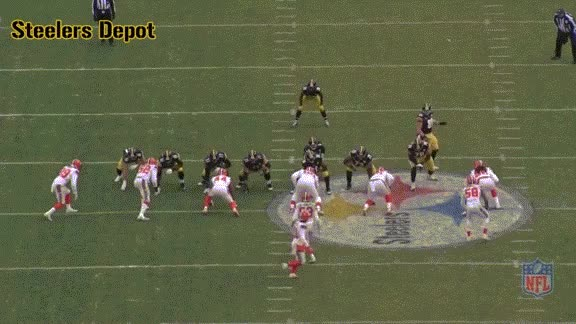 Watch and share 13-browns-4 GIFs on Gfycat