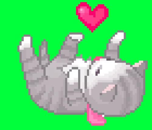 Watch Cute Kitten GIF on Gfycat. Discover more Kitten, heart GIFs on Gfycat