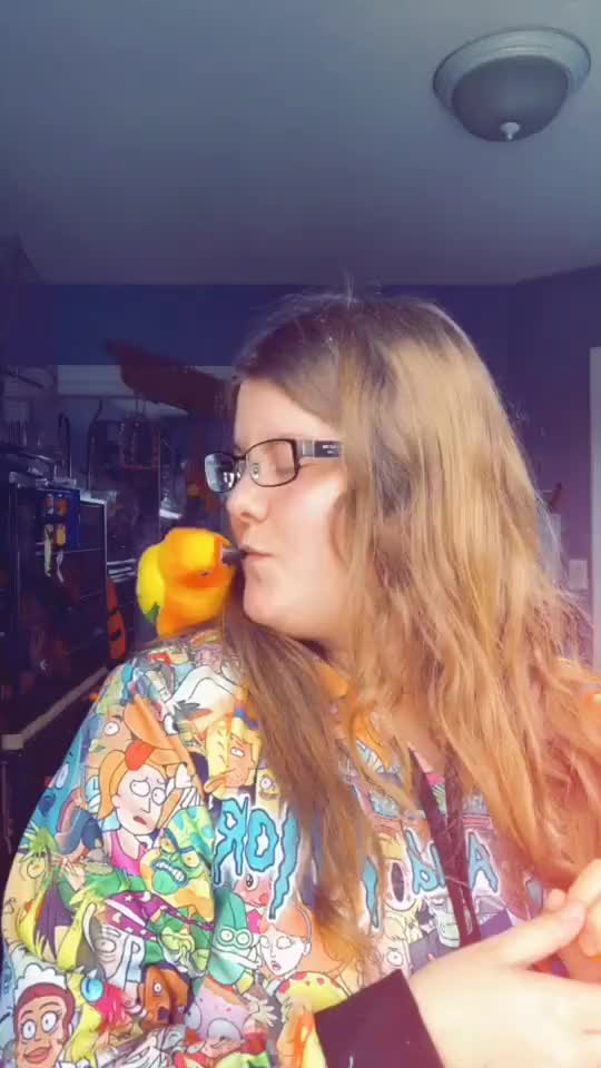 Tango likes me better without glasses I think 🤔 #bird #aww #foryou #love #featurethis love foryou bird aww GIF