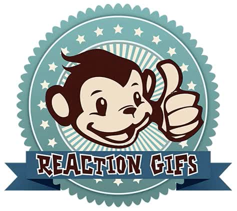 Watch and share Reaction GIFs on Gfycat