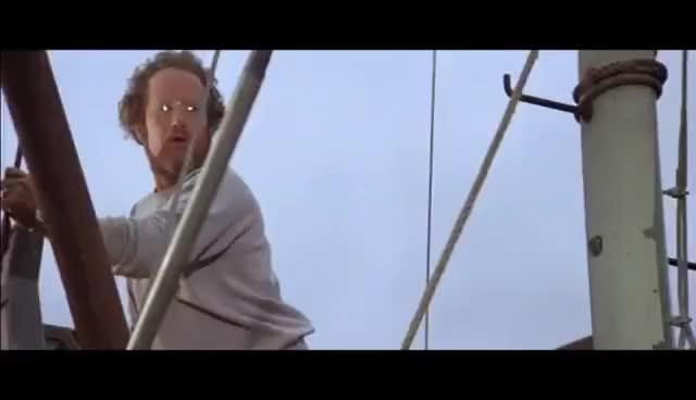 """Watch and share Epic Movie Scenes - Jaws - """"You're Gonna Need A Bigger Boat"""" GIFs on Gfycat"""