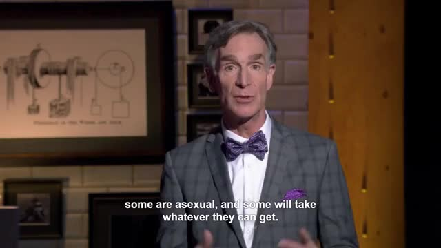 Watch and share Transgender GIFs and Bill Nye GIFs on Gfycat