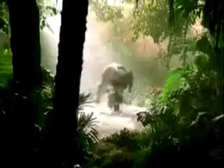 Watch elephant GIF on Gfycat. Discover more commercial, dancing, elephant, rain GIFs on Gfycat