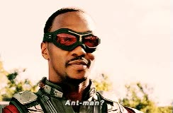 Watch and share Anthony Mackie GIFs and Ant Man GIFs on Gfycat