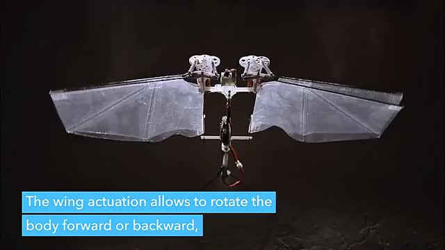 Watch and share Flying Robot Insect GIFs by whitesombrero on Gfycat