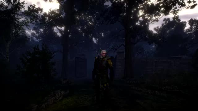 Watch and share Witcher GIFs by 24bits on Gfycat