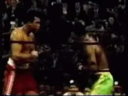 Watch Frazier Left Hook GIF by @mightyfighter on Gfycat. Discover more related GIFs on Gfycat
