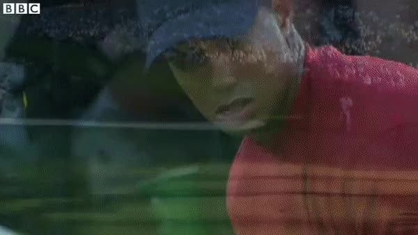 Watch and share More Tiger Magic GIFs on Gfycat