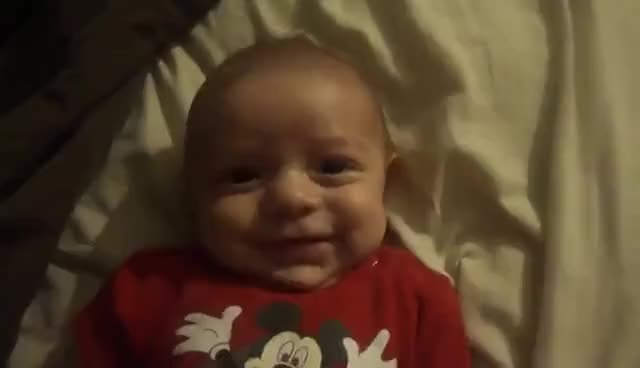 Watch this baby GIF on Gfycat. Discover more aww, awww, baby, cute, cute baby, kid, little baby, lol wut, newborn GIFs on Gfycat