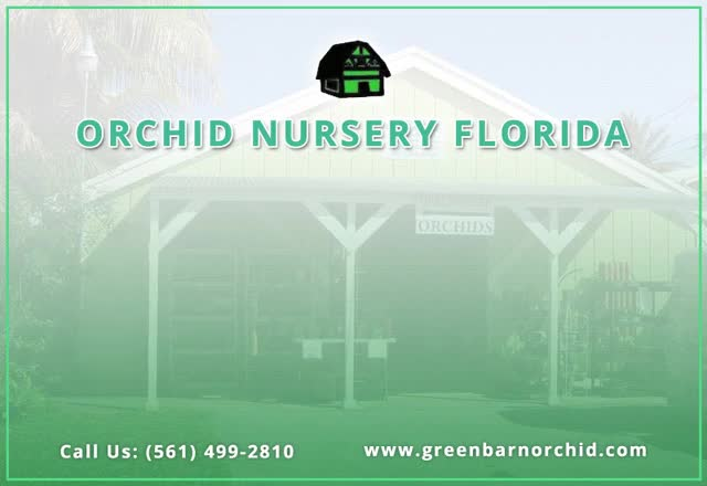 Watch and share Orchid Supplies GIFs by greenbarnorchid on Gfycat