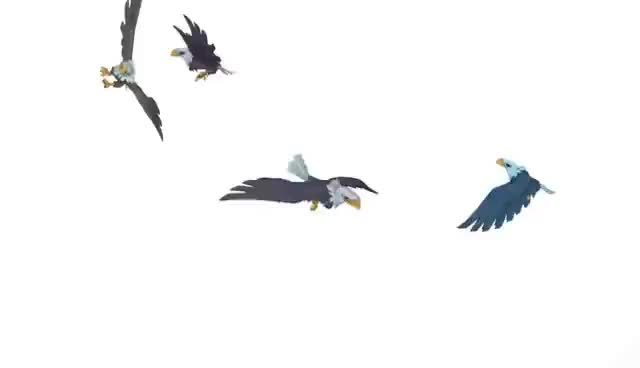 animaljam, Eagles GIFs