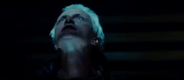 Watch and share Blade Runner GIFs by odorous on Gfycat
