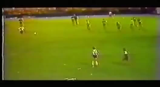 Watch Barcelona FC vs Athletic Bilbao fight including Maradona, 1984 (reddit) GIF on Gfycat. Discover more humansbeingbros, soccer GIFs on Gfycat