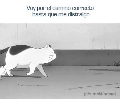 Watch el camino GIF on Gfycat. Discover more related GIFs on Gfycat