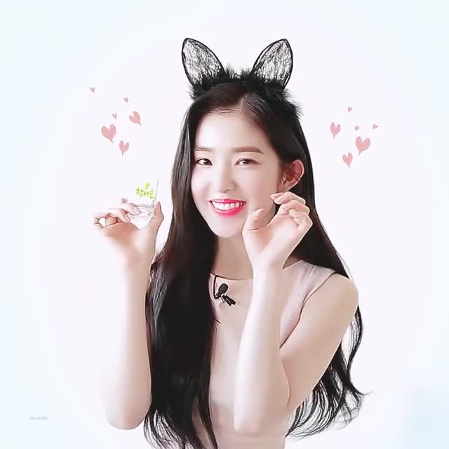 Watch and share 고양이 아이린 GIFs on Gfycat