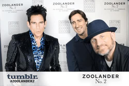 Watch and share Zoolander Ant GIFs on Gfycat