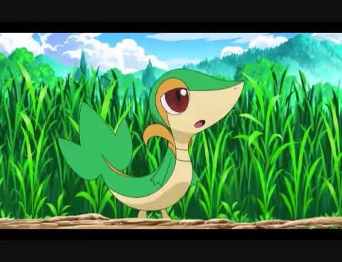Watch and share Pokemon GIFs and Snivy GIFs on Gfycat