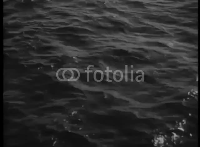 Watch and share 700 F 99466660 2GDF10HTUJAnaMk0P7A9jobha5VPAtf3 GIFs by Trey Haas on Gfycat