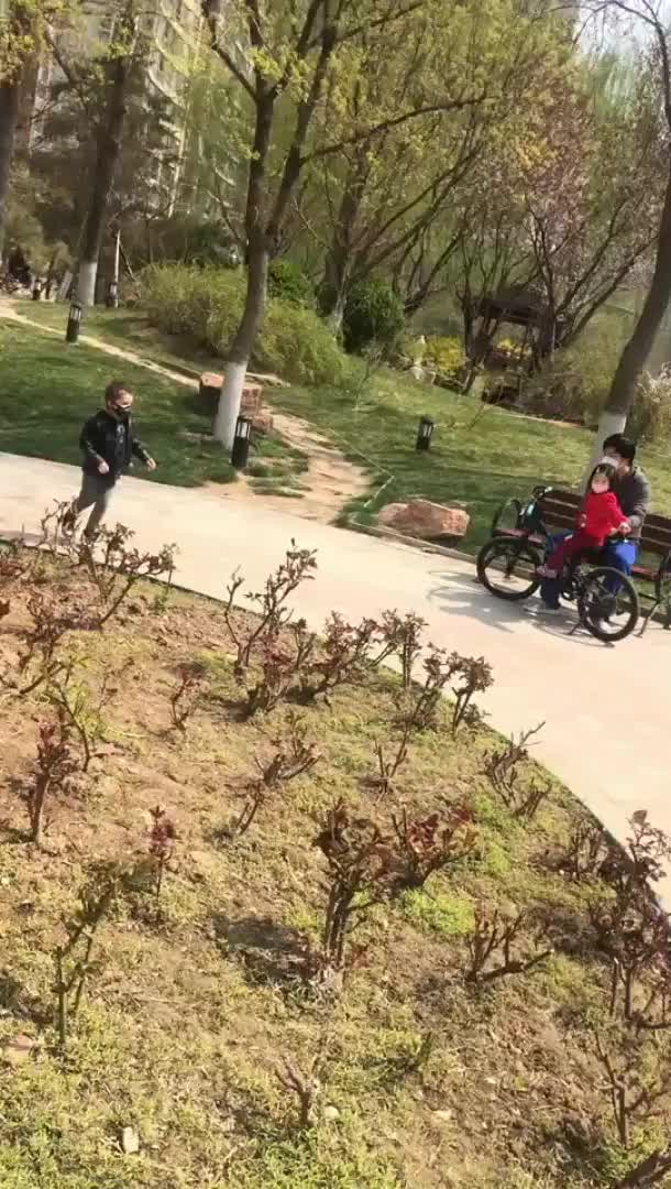 "Watch and share ""I Can't Believe You're Back!"": Best Friends Reunited After Beijing Ends Lockdown. GIFs by natsdorf on Gfycat"