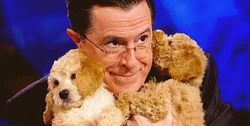 Watch and share Stephen Colbert GIFs and Puppies GIFs on Gfycat