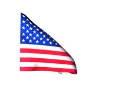 Watch and share Drapeau USA GIFs on Gfycat