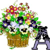 Watch Pansies Boquet Flowers Fleurs alphabet flores Blumen GIF on Gfycat. Discover more related GIFs on Gfycat
