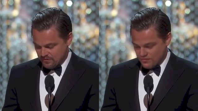 Watch Tiefenschwindel Demo II Leonardo DeepCaprio GIF on Gfycat. Discover more celebs, leonardo dicaprio GIFs on Gfycat