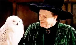 Watch and share Minerva Mcgonagall GIFs and Maggie Smith GIFs on Gfycat