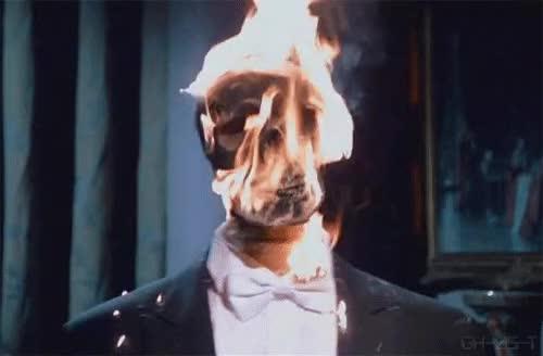 Hace tanto calor que tengo dos ventiladores, un ag...