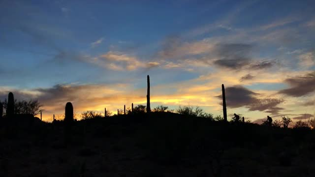 Watch and share Tucson GIFs and Mtb GIFs on Gfycat
