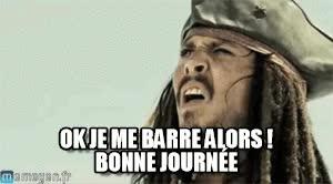 Watch and share Jack Sparrow : Ok Je Me Barre Alors ! Bonne Journée - By Carmaeken GIFs on Gfycat