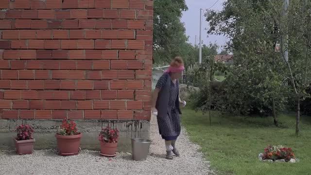 Watch and share DOBRO JUTRO KOMSIJA 5 - FILM (BN Televizija 2019) HD GIFs on Gfycat