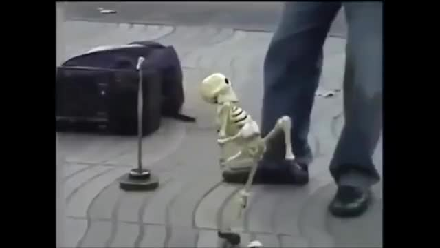 Watch dank memes GIF on Gfycat. Discover more RIPVINES, dancing, dank, party, puppet, remembervines, skeletons GIFs on Gfycat