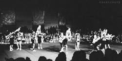 Watch my gifs mine cheer athletics 1knotes wildcats GIF on Gfycat. Discover more related GIFs on Gfycat