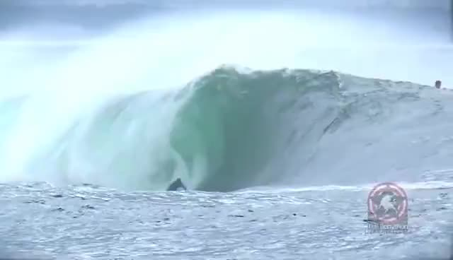 surfing, Surfing the right GIFs