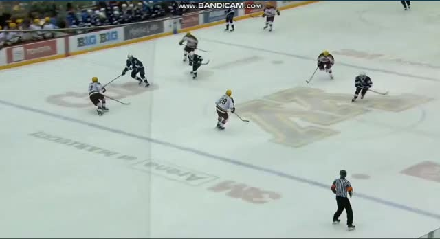 Watch and share Hockey GIFs by christaylorpsu on Gfycat