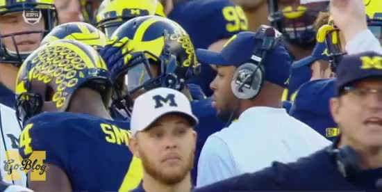 Watch and share Jim Harbaugh GIFs and Maryland GIFs by MGoBlog on Gfycat