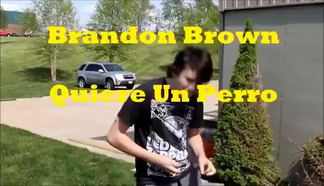 Brandon Brown Quiere Un Perro | ft. Christian, Jayce, and Caleb